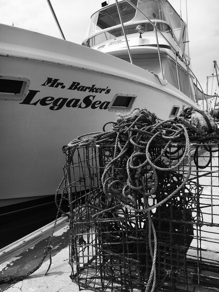 Lobster trap found today on our excursion with Ocean Defender Alliance on The Legay boat donated by legendary tv host Bob Barker.